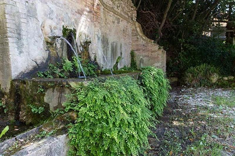 home - AbruzzoNaturista